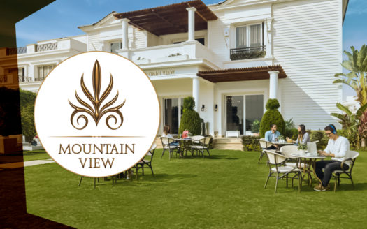 Mountain-View-II